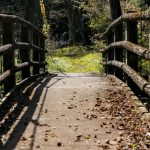 東京からわずか2時間!関東在住者なら確実に知っておくべきパワースポット「出流ふれあいの森」